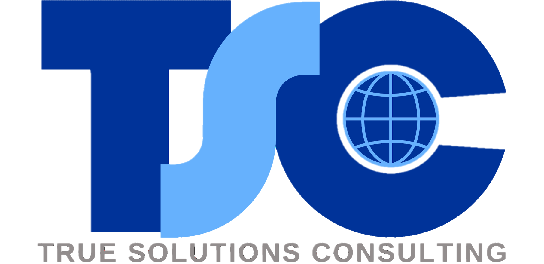 True Solutions Consulting
